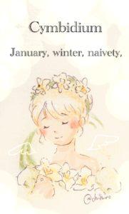 1月誕生花シンビジウム無料イラスト